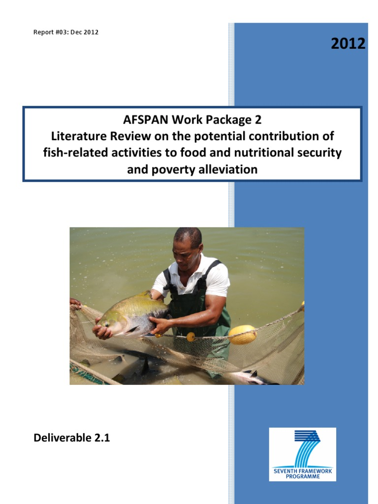 literature review on poverty alleviation