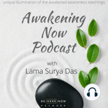 Ep 5. - Awareness is Curative