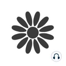 Zencast 388 - Cultivating the Noble Eightfold Path Pt3 by Gil Fronsdal: Cultivating the Noble Eightfold Path Pt3 - Gil FronsdalThis teaching is given freely courtesy ofAudio Dharma.Audio Dharma;IMC;Gil Fronsdal