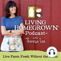LH 126: Sourdough Starter and Heirloom Flours: How to make sourdough bread using heirloom grains - And make an Onion Jam Recipe to spread on that fresh baked bread! This is an important episode and I could not be more excited to share it. Here's why… When we take the time to do things like...