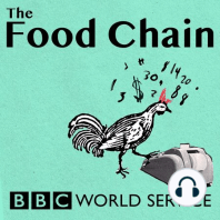 Finding a Food Champion: Meet the people changing what and how we eat.