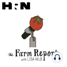 Episode 51: Angela Miller: This week on The Farm Report Erin and Heather speak to Angela Miller of Consider Bardwell farm. Angela is a literary agent turned dairy farmer, and is the author of Hay Fever, a book that chronicles the ups and downs of that life-altering change in trajec