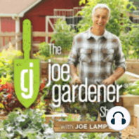 112-Efficient Watering in the Garden and Landscape and Why it Matters: Water – When it comes to the garden, water can be a blessing and a curse. One year brings heavy rain, while the next might bring severe drought challenges. Mother Nature can definitely wreak havoc on our garden success,