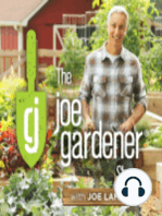 097-Spring Tips for Vegetable Garden Success