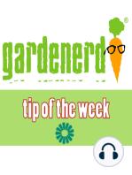 Garden as Therapy