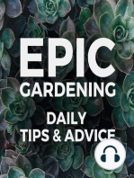 How to Stay Motivated to Garden