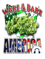 Wake & Bake America 852:The Great Pot Plane Crash Of 1979 & Your Brain On Drugs