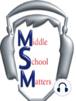 MSM 389