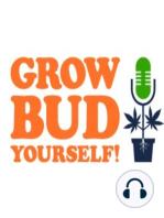 Free Weed - Episode 43