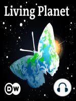 Living Planet