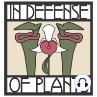Ep. 173 - What the Dogbane Family Can Teach Us About Pollination