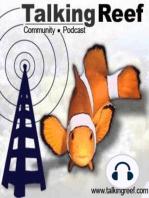 Clownfish1-Intro-TR-Ep100