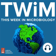 TWiM #39: What Darwin never knew: Vincent, Michael, and Elio reviews chapters from Microbes and Evolution, a collection of short, personal essays by microbiologists.