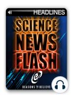 Neutrinos Travel Faster Than Light?