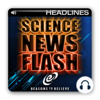 """Laws of Physics Vary Throughout the Universe, New Study Suggests: ScienceDaily.com, """"Laws of Physics Vary Throughout the Universe, New Study Suggests,"""" September 9, 2010 ; http://www.sciencedaily.com/releases/2010/09/100909004112.htm"""