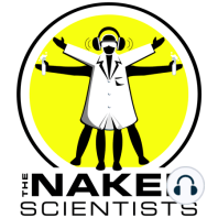 Robots and Artificial Intelligence: This week, robots have taken over the Naked Scientists! Okay, not really but we are looking into the world of robotics to find robots that can clean your floor, disarm bombs and wage war on our behalf. We find out about 'Curious George', a ro...