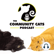"""Ep123 - Hannah Shaw: """"I live and breathe cat advocacy…that's what I do."""""""
