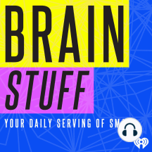 Why the Sky is Blue?: As sunlight passes through the atmosphere, particles in the air scatter blue light more efficiently than any other color in the light spectrum, creating a blue sky. Learn more about the sky and light in this Brainstuff podcast.