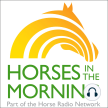 Mission Mustang and a Horse Health Segment on Laminitis for July 03, 2019 by HORSELOVERZ: Glenn starts us off with some updates. Then, we have a couple of guests coming on from Mission Mustang, a national pilot program involving a therapeutic riding facility outside of Rochester, NY. And, we are joined by Dr. Nerida Richards for a Horse Health