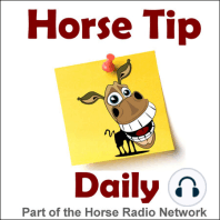 #1317 – Five Panel Testing with Dr. Lacher – by Purina Mills: Today HITM co-hosts Glenn & Jamie talk about Five Panel Testing in Quarter Horses with Dr. Erica Lacher from Spring Hill Equine Clinic in Newberry, FL. Listen in...