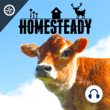 SHORT: Farming chickens, pigs, and hunting... How homesteaders can stop buying meat from the supermarket: Hunting deer, raising pigs, processing chickens, learn how you can get 1000 lbs of meat from your own backyard!