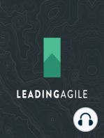 Agile Fluency Model w/ Diana Larsen