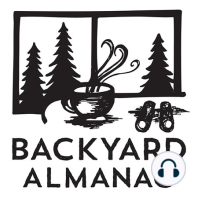 Backyard Almanac: Summer is this morning at 10:54am. Don't miss it.: As we prepare to head into summer this morning (!), Larry reports that while the average temperature is colder than normal, so is the rainfall amount. Roadside flowers, ladyslipper orchids in abundance, berries and trees in bloom, and why you should be