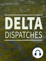 Mapping Louisiana