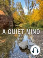 The Silent Observer