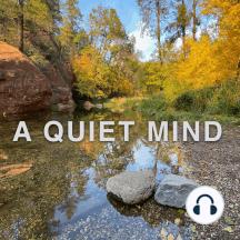 Loosing the Me, Mine and I: Meditation, Self Awareness, Healing, Spirituality and Peace