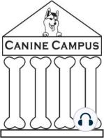 Canine Campus #8