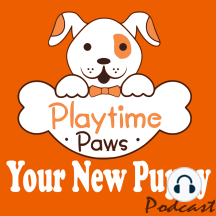 "YNP #026: Timing is EVERYTHING When Training Your Dog: The foundation of positive dog training is to reward the behaviors we want repeated and ignore or redirect the behaviors we don't want repeated. Oh, how I wish it were that simple.  A question we don't even think to ask is ""how does the dog know what b..."
