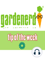 Spring Garden Planting Guide