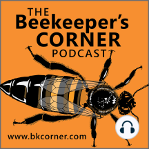 BKCorner Episode 63 - While You Were Out: Episode Topics: Local Hive Report. Honey vs. sugar solutions, Number of US Bee Colonies, Sub-Lethal Imidacloprid, Bumblebees and Honey Bee Diseases, Stinging Nettle, Great Tomato Tasting Event, Creamed Honey Update, Infused Honey, Term Eclosion