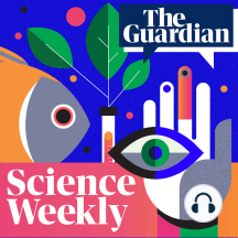 The menopause: a new treatment for hot flushes? – Science Weekly podcast: Despite being something that will affect half the world's population, the menopause, and how it can lead to things such as hot flushes, has historically been a bit of a 'black box' for scientists. But thanks to new insights from animal research, a much-needed alternative to hormone replacement therapy could be just around the corner. Hannah Devlin investigates
