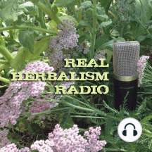 222.Finding an Herbal Business Path with Yolanda Joy