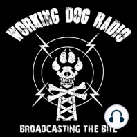 ?Episode 111: Using working dog skills in the civilian world with Andrew Ramsey: From Dachshund lover to DoD trainer to pet dog business, Andrew Ramsey has had quite the journey in the dog world, and he's not done yet ! Your hosts got an inside look at what it was like to work in the K9 and Puppy programs at Lackland; from breeding...
