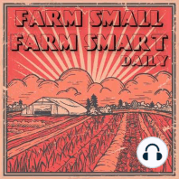 Farm Small: Balancing Farm and Family with Derek Amadi (FSFS233): As farmers and business owners, it's easy to get lost in productivity—the need to grow more, sell more, expand the farm, scale operations. This episode's guest, Derek Amadi from Texas, is trying to spend more time with his family, enjoy...