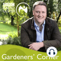 Grow your own wedding flowers, living the 'Good' life and crunch time for two apple trees.: David Maxwell and guests talk February gardening and take listeners' questions.