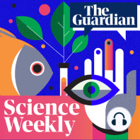 Carlo Rovelli on how to understand the quantum world (part 2): From electrons behaving as both particles and waves to a cat in a box that's both dead and alive, the consequences of quantum physics are decidedly weird. So strange, that over a century since its conception, scientists are still arguing about the best way to understand the theory. In the second of two episodes, Ian Sample sits down with the physicist Carlo Rovelli to discuss his ideas for explaining quantum physics, and what it means for our understanding of the world
