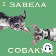 Виталий Писаренко и Чубака