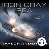 Iron Gray Sea