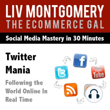 Twitter Mania: Following the World Online in Real Time