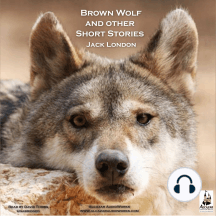 Brown Wolf and Other Stories: Brown Wolf, Just Meat, a Day's Lodging and Amateur Night