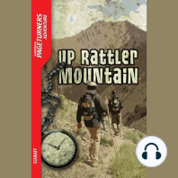 Up Rattler Mountain