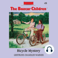 Bicycle Mystery
