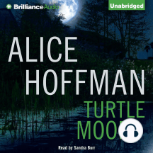 Turtle Moon