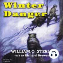 Winter Danger