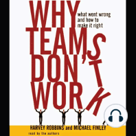 Why Teams Don't Work