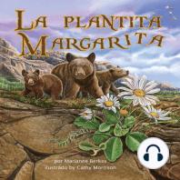La plantita Margarita